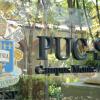Cursos de Especialização e Extensão da PUC-SP unem excelência acadêmica às tendências de mercado