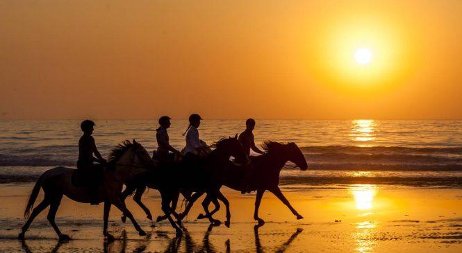 Ama cavalos? Este hotel entre o campo e o mar é para você!
